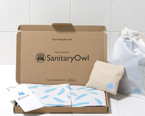 Sanitary_Owl_Feature